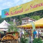 Le Festival des Saveurs, un bon cru 2011